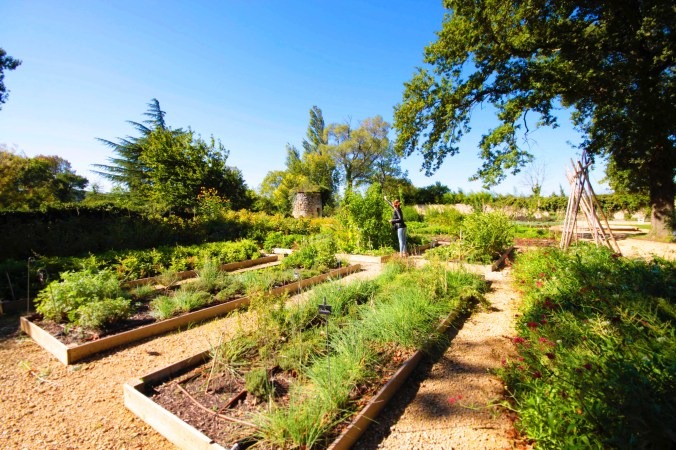 potager-chateau-de-massillan-mademoiselle-travel-copie